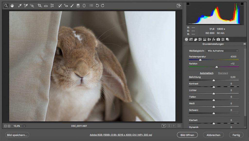 Photoshop-Dialog RAW-Einstellungen