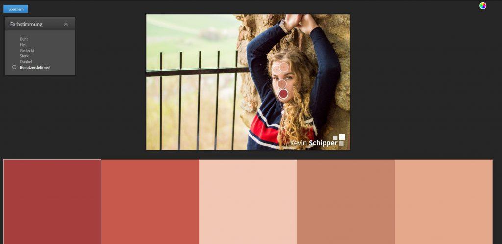 Abbildung 4: Fotos kolorieren - Farbschema