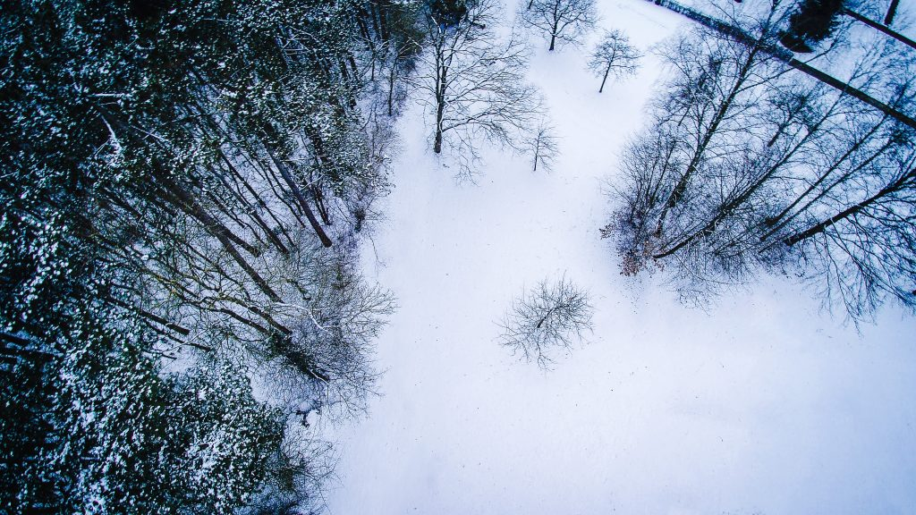 Multicopter-Fotografie - Wald