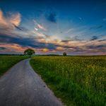 Der Weg, der Sonne entgegen